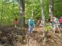 Lesní brigáda